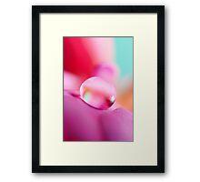Fuchsia Drop Framed Print
