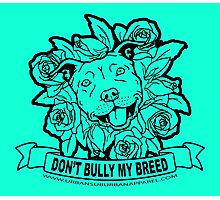 DON'T BULLY MY BREED ROSES Photographic Print