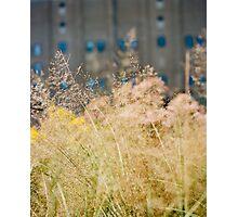 High Line NYC Photographic Print