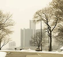 Winter View Of Detroit From Belle Isle by anitahiltz