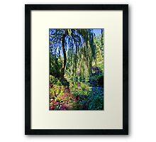 Willow. Framed Print