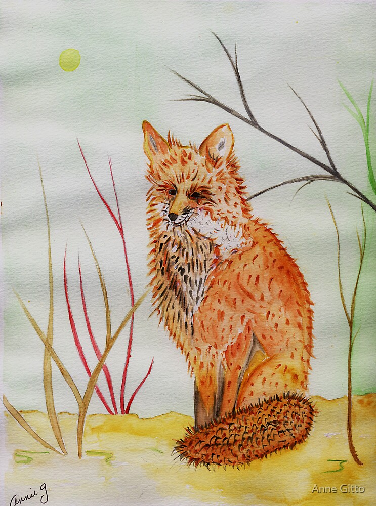 A Red Fox by Anne Gitto