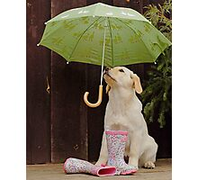 They said rain today! Photographic Print
