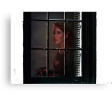 Even for elves ... Canvas Print