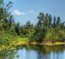 The lake at Paradise Island in Nassau, The Bahamas by Jeremy Lavender Photography