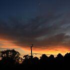 Lisle Night Sky by Adam Kuehl