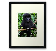 Learning to climb. Framed Print