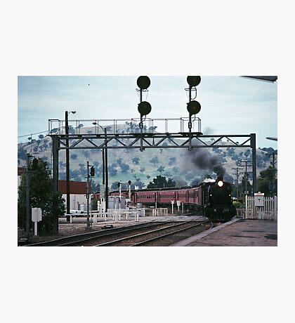 Excursion train coming into Wodonga Railway station 19810300 0006 Photographic Print