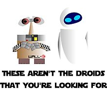 These aren't the droids that you're looking for Photographic Print