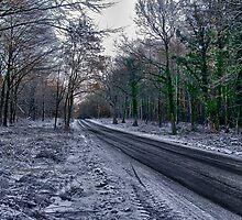 A Winters Scene by Trevor Kersley