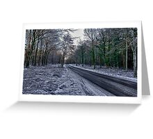 A Winters Scene Greeting Card
