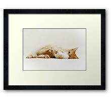 Pure Contentment Framed Print