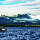 Leaving Ketchikan Harbor, Alaska by NSauer01