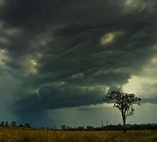 Storm Front - Peachester by Kate Wall