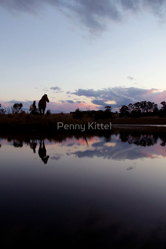 Calm before the Equistorm by Penny Kittel