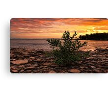 Morning Comes Up Shouting Canvas Print