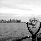 View of Manhattan from Liberty Island by Federica Gentile