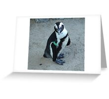 I am Karl, the Warden of the Zoo Greeting Card