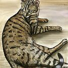 Bengal Cat by Elle J Wilson
