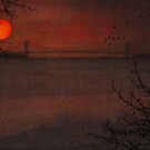 SUNSET VIEW OF THE VERAZZANO BRIDGE by TOM YORK