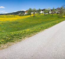 Countryside Panorama by Walter Quirtmair
