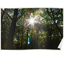 A Glimpse of Light Poster