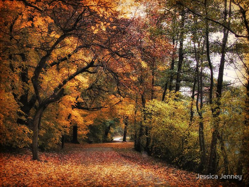 Golden Carpet by Jessica Jenney