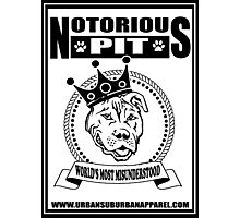 NOTORIOUS PIT BULL Photographic Print