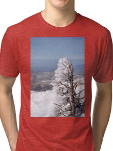 Israel, Hermon Mountain, tree covered with snow  Tri-blend T-Shirt