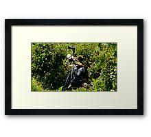 Bird Hunting Framed Print