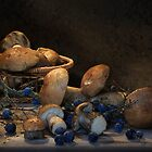 With sloe berries by VallaV