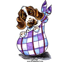 English Cocker Spaniel Sack Puppy Photographic Print