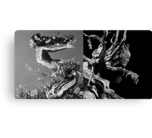 Mother Earth, Father Time Canvas Print
