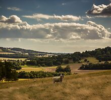 Over Godmersham by Ian Hufton