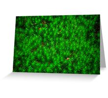 Japanese Moss Greeting Card