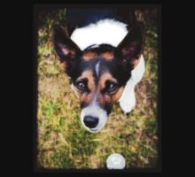 Jessie the Jack Russell Terrier: It's All About the Ball Kids Tee