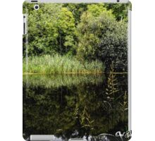 Quoile Mirror iPad Case/Skin