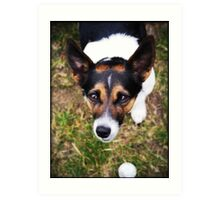 Jessie the Jack Russell Terrier: It's All About the Ball Art Print