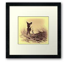 Vintage Bailey Framed Print
