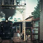 Excursion train at Wodonga Railway station 19810300 0037 by Fred Mitchell
