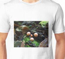 Lycogala epidendrum Unisex T-Shirt