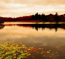 The sun never sets to the north... Fall at the Pond by Poete100