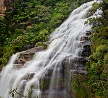 Wentworth Falls waterfall, New South Wales, Australia by Sharpeyeimages