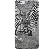 Zebra Flight iPhone Case/Skin