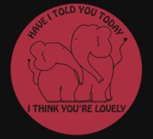 Have I told you today I think you're lovely by Cathryn Swanson