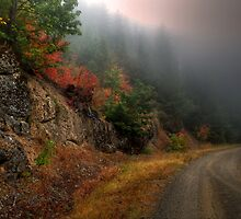 The Rush To Fall by Charles & Patricia   Harkins ~ Picture Oregon