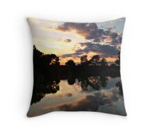 Double Vision Throw Pillow