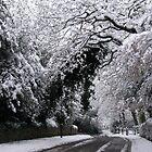 Snow Lane UK by scotts03