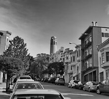Coit Tower & Telegraph Hill by James Webb