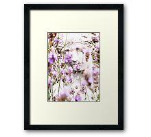 Lady in Lavander Framed Print